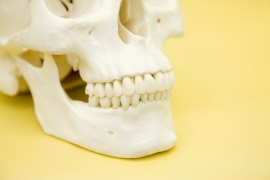 また歯髄の感染が大きいケースでは、炎症が歯を支えている歯槽骨にまで及ぶことがあり、一般的な根管治療では治癒しないという場合も少なくありません。このような場合は外科的な根管治療を選択することがあります